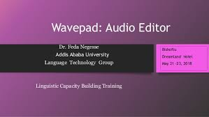 WavePad Sound Editor 9.34 Crack With Serial Number Free Download 2019